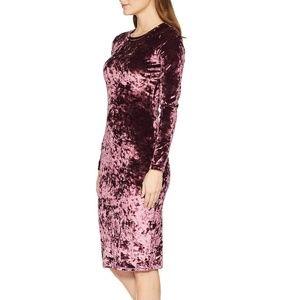 NWT Michael Kors Purple Velvet Dress
